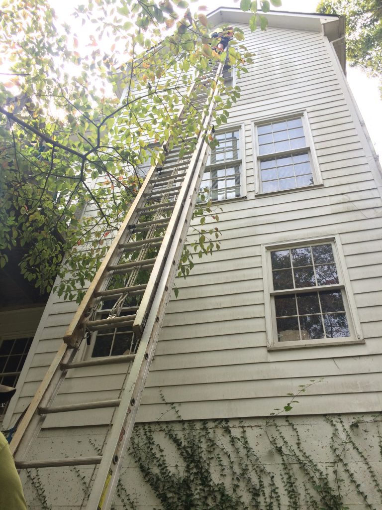 A tall ladder against a house.