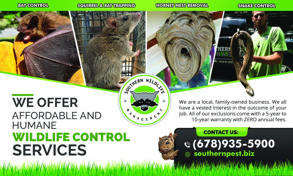 Our Nuisance Wildlife removal services