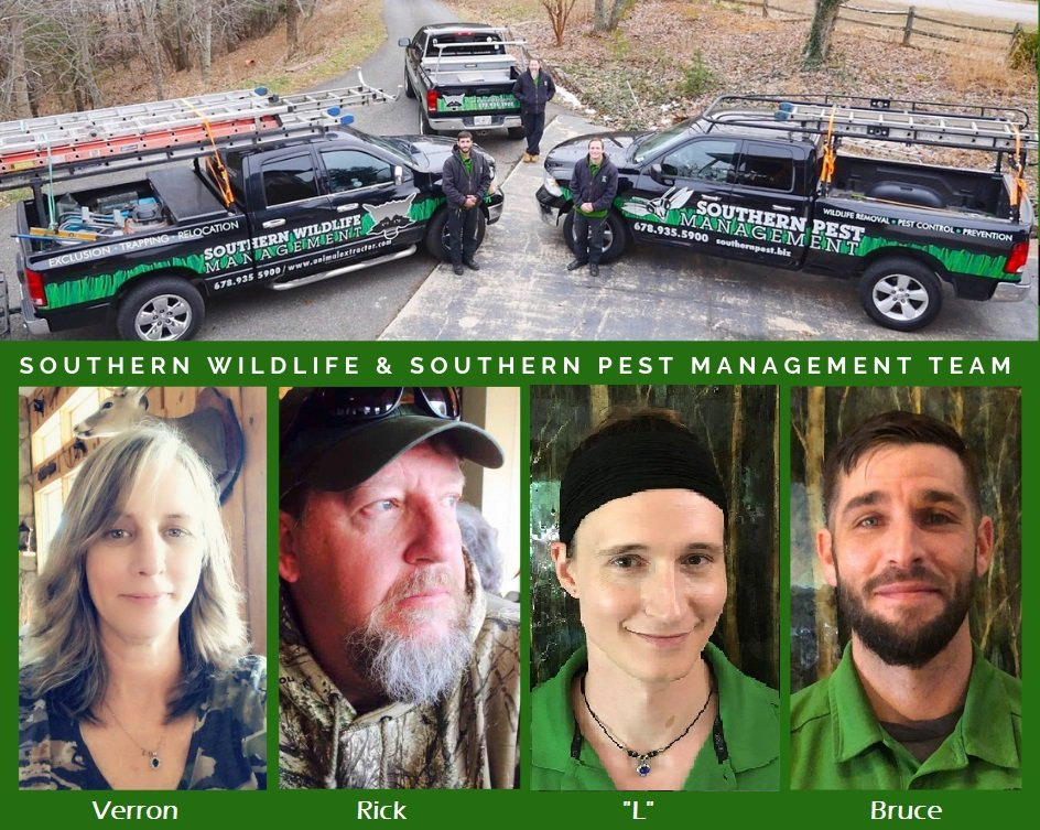 Wildlife Team
